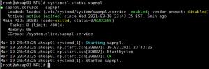 systemctl status sapnpl output